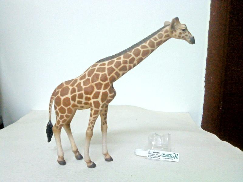 Dr.Narayanan CollectA collection Rsz_giraffe