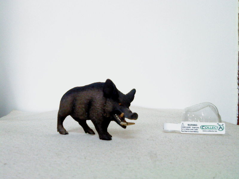 Dr.Narayanan CollectA collection Rsz_wild_boar_charging_2