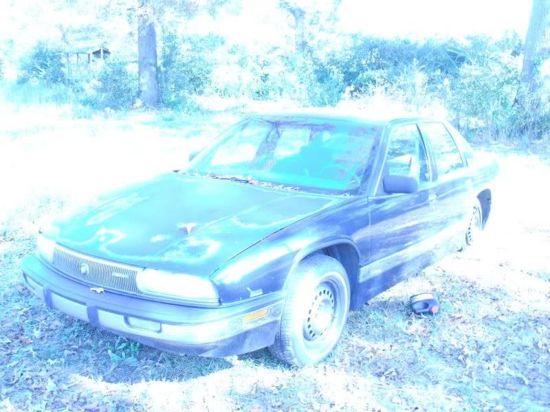 my long term low buck all purpose toy.  DSCF0382