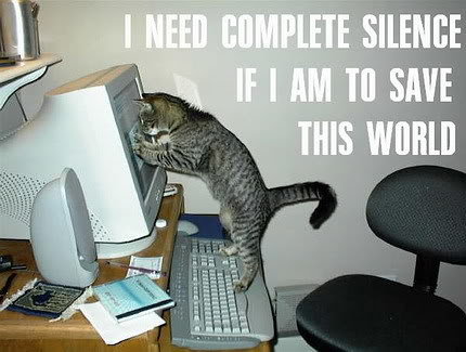 CAT-tastrophes! Funny_cat_pictures_pc_3