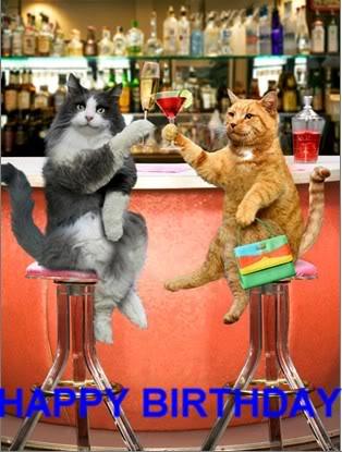 HAPPY BIRTHDAY FC!!  04/10/13 Cat