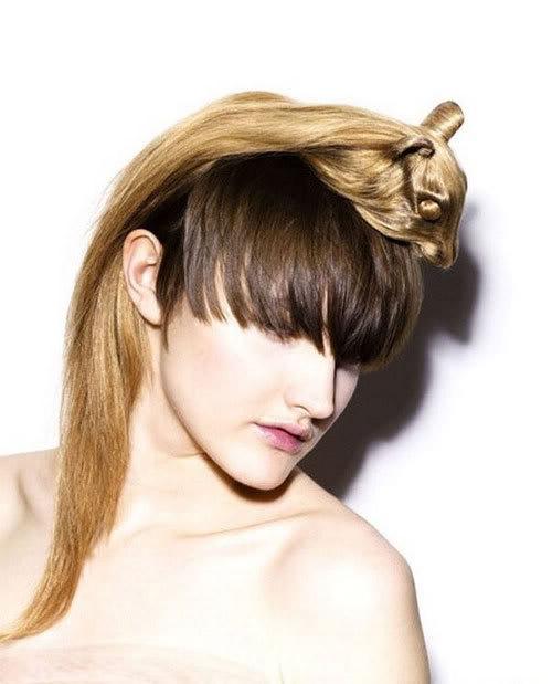 Cortes de cabelo em forma de animais Ccr-02