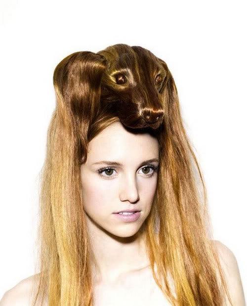 Cortes de cabelo em forma de animais Ccr-09