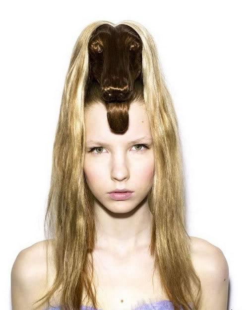 Cortes de cabelo em forma de animais Ccr-12