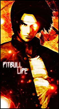 Pit Bull Lipe