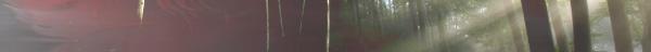 Le Bois des Murmures