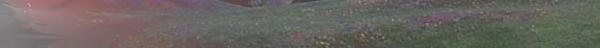 Les Pleines Violettes