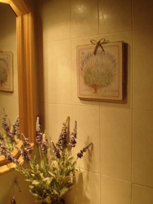 Aromaterapia. Lavanda2