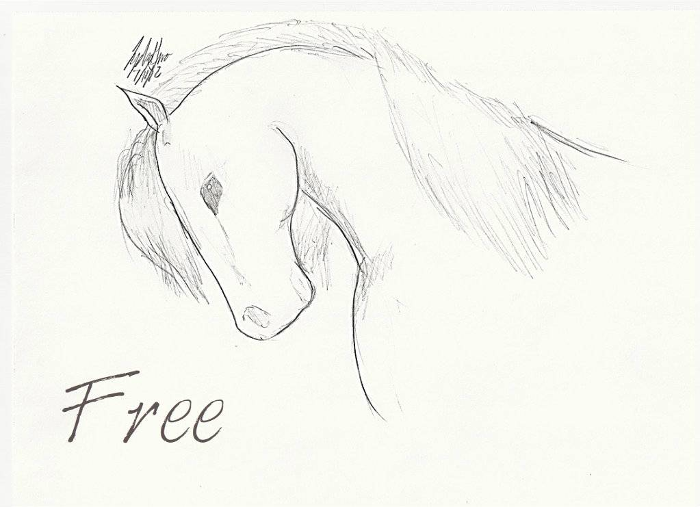 Art Gallery Example!  HORSE-1