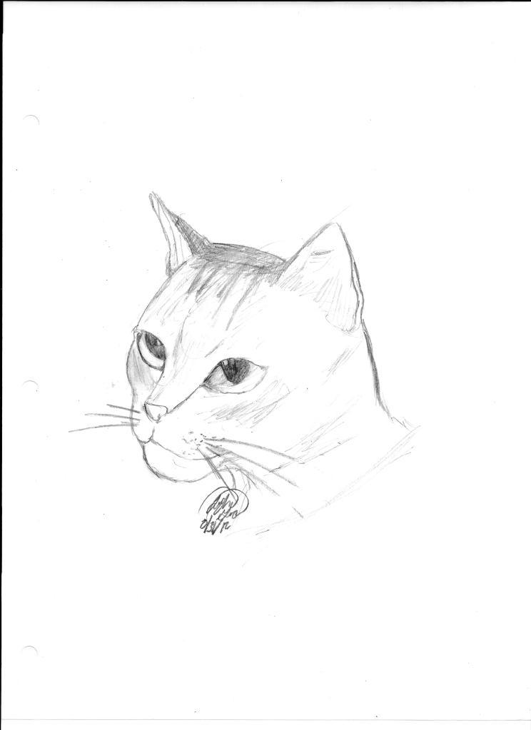 Art Gallery Example!  Kitty