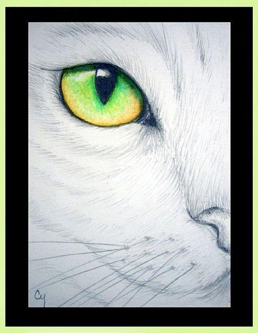 Un polizonte en Vill Draves Cat2_zpsac79a21d