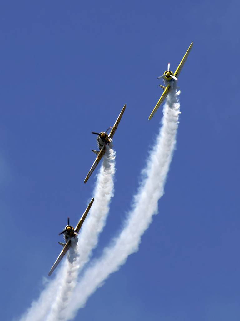 AeroNautic Show Surduc 2012 - Poze DSC_9777