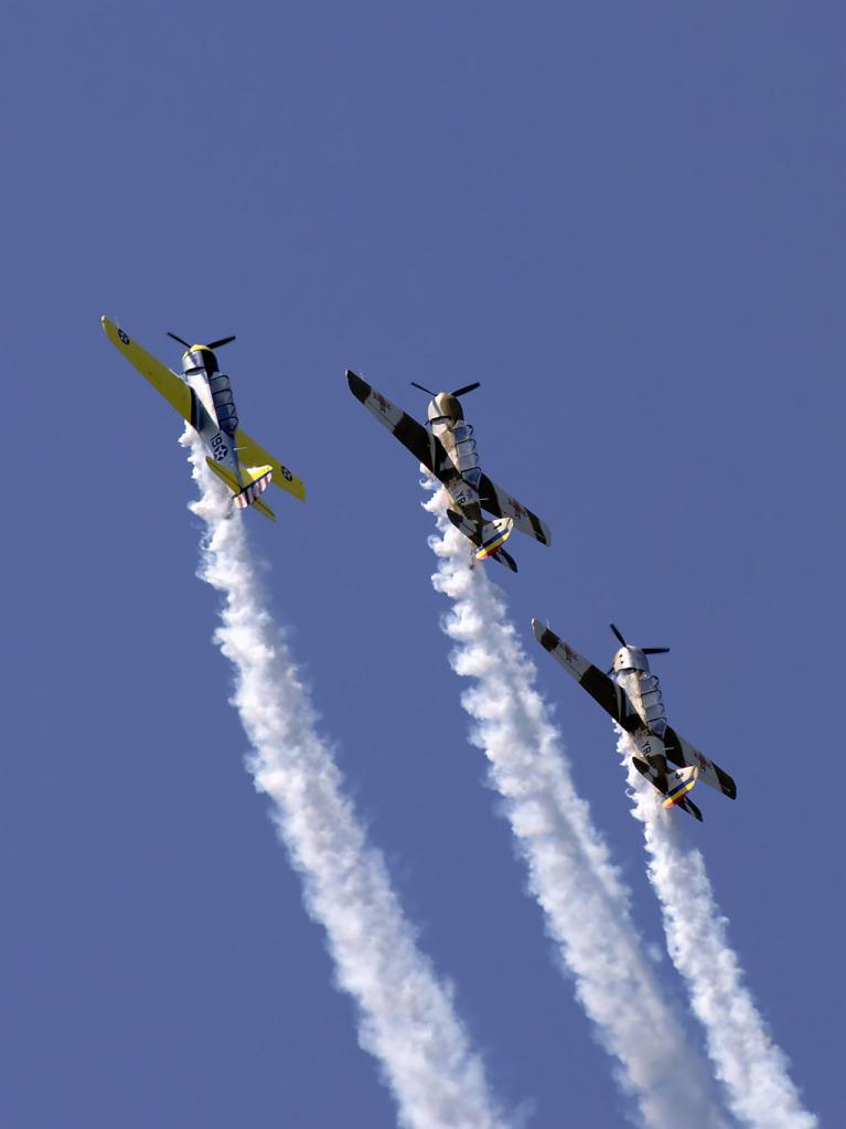 AeroNautic Show Surduc 2012 - Poze DSC_9861