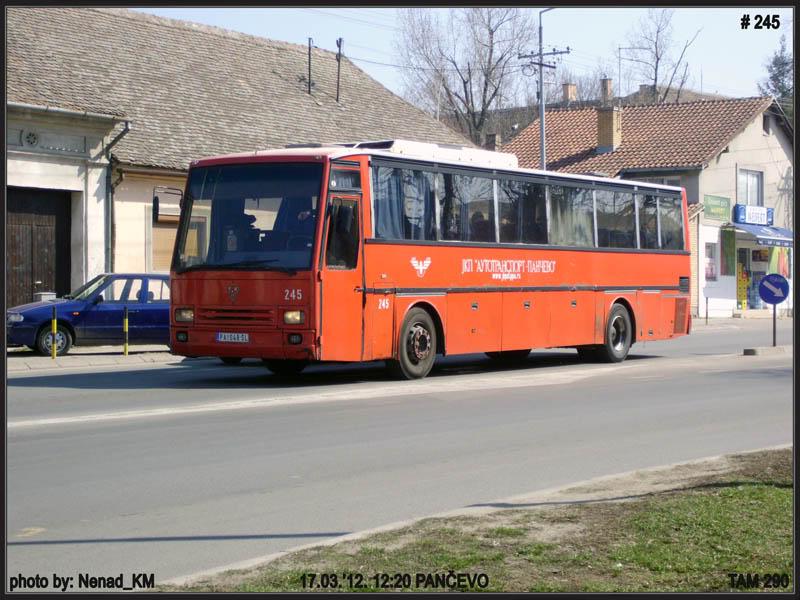 JKP Autotransport Pančevo - Page 2 ATP245-1