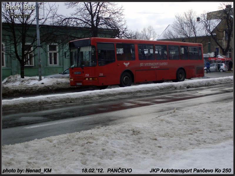 JKP Autotransport Pančevo ATP250