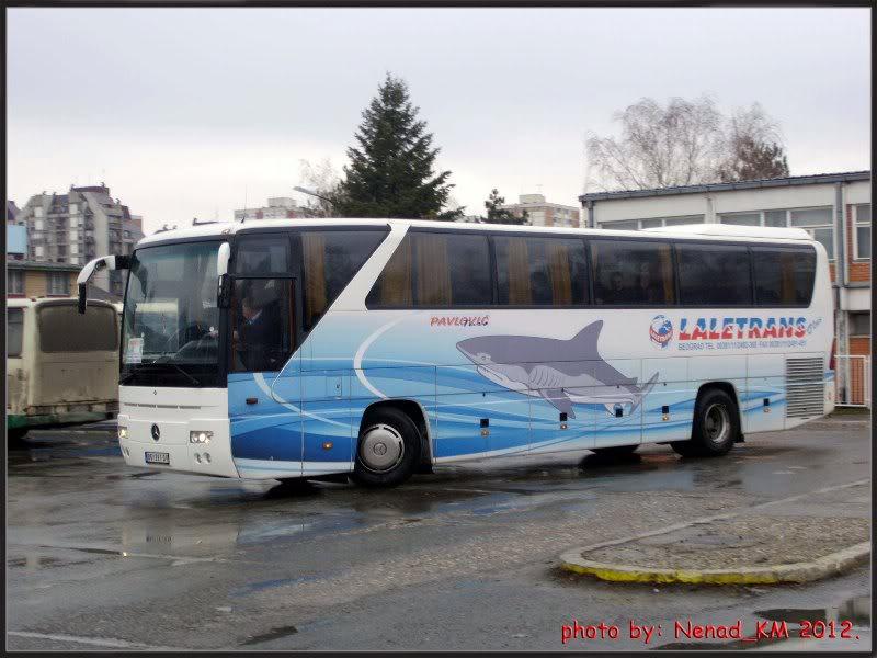 Ostali Prevoznici iz Srbije PavlovictursSU1