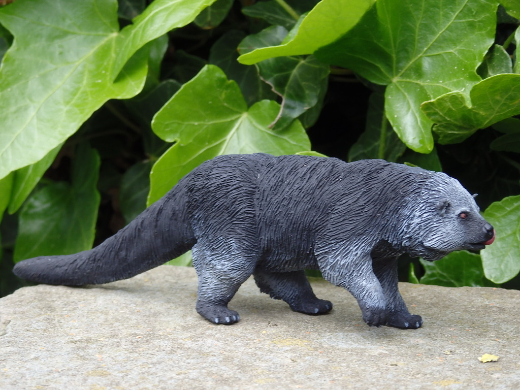 A lovely guy is arrived at home - 1:10 scale resin binturong from Arborium studio !  P5190297_zps4rdnszkf