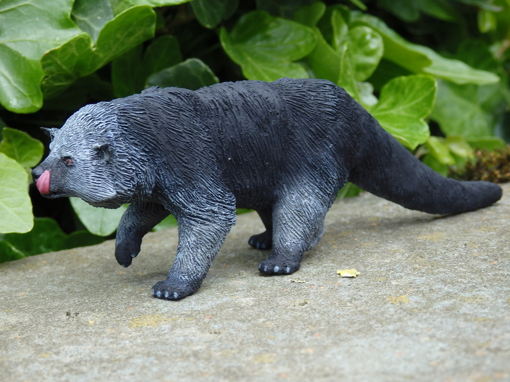 A lovely guy is arrived at home - 1:10 scale resin binturong from Arborium studio !  P5190304_zpsc87yg2vp