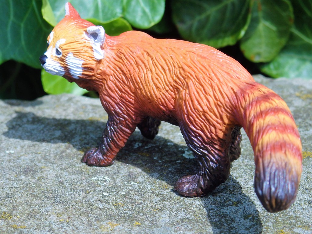 Walk around of the new 2016 Bullyland RED PANDA :)  P7080060%202_zpshnd0l9mq