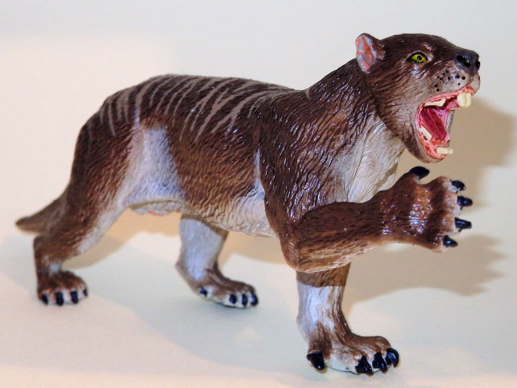 My Southlands models are arrived : Thylacoleo and Thylacine :)  PC140111%202_zpsuxbzxqyf