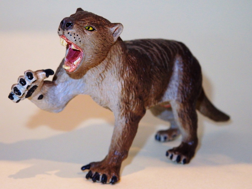 My Southlands models are arrived : Thylacoleo and Thylacine :)  PC140113%202_zpsskhgzytw