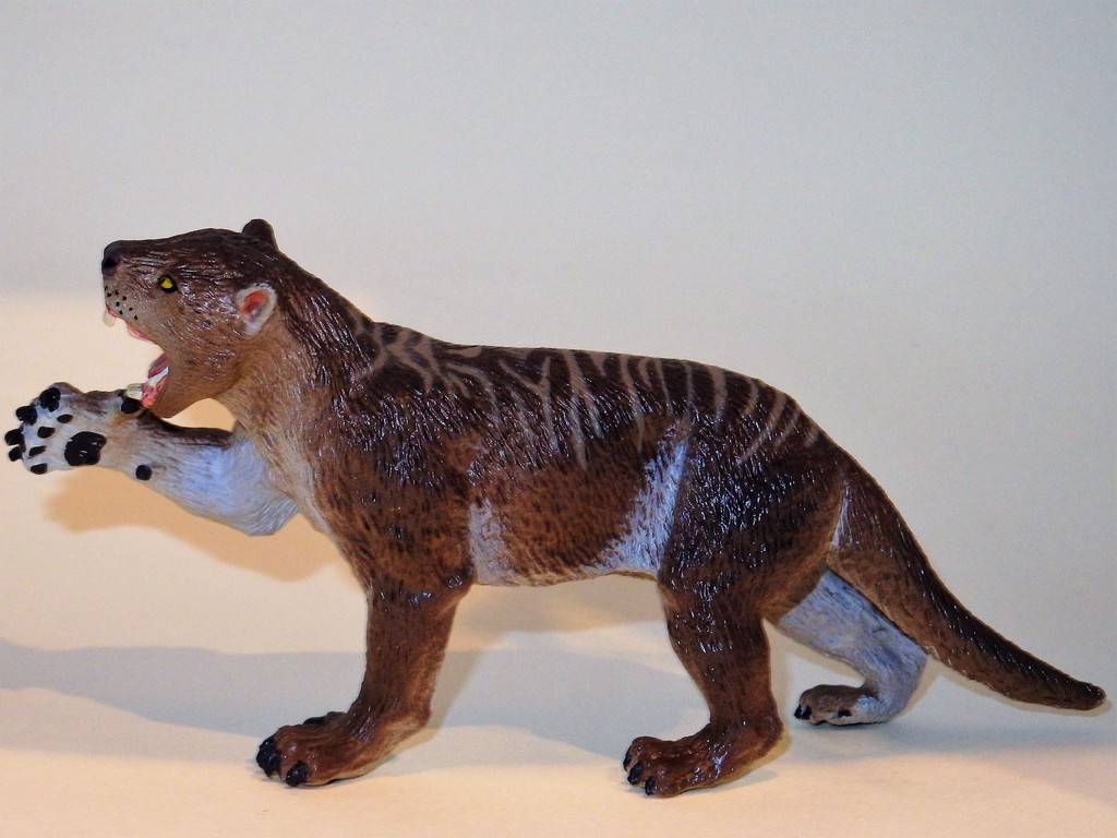 My Southlands models are arrived : Thylacoleo and Thylacine :)  PC140116%202_zpsjd5famwe