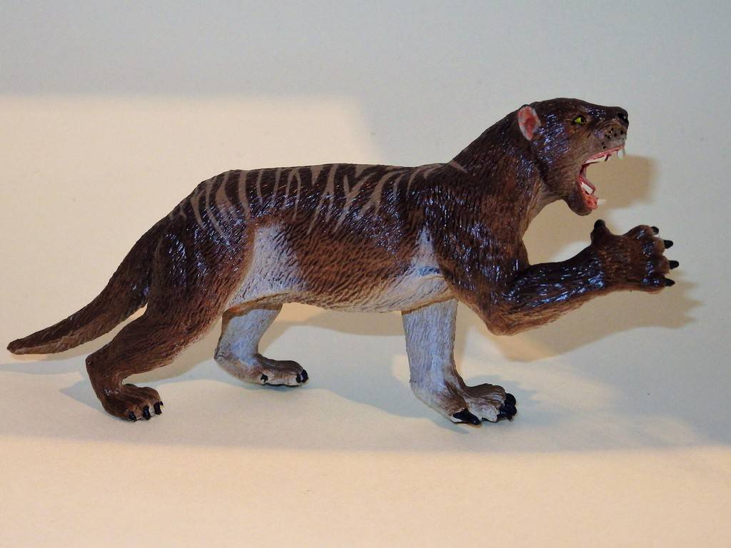 My Southlands models are arrived : Thylacoleo and Thylacine :)  PC140119%202_zpsvzsccrqs