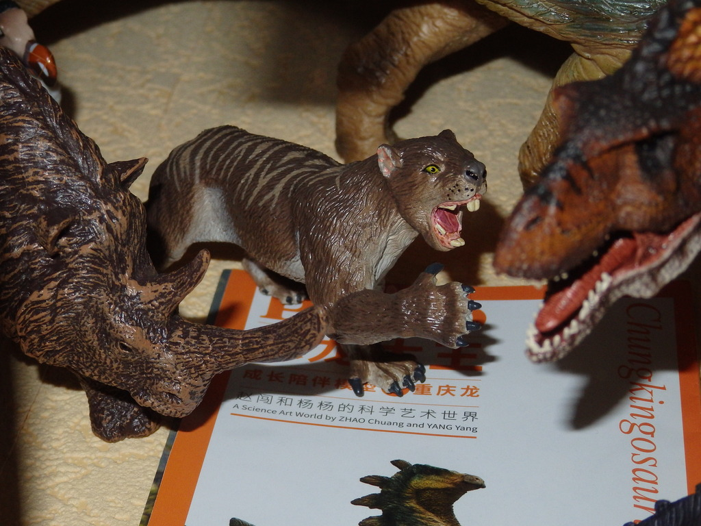 My Southlands models are arrived : Thylacoleo and Thylacine :)  PC140146_zpsrmzn4mvm