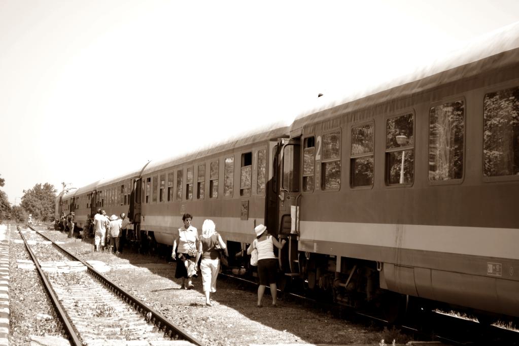 Diverse poze cu trenuri ! _DSC0244