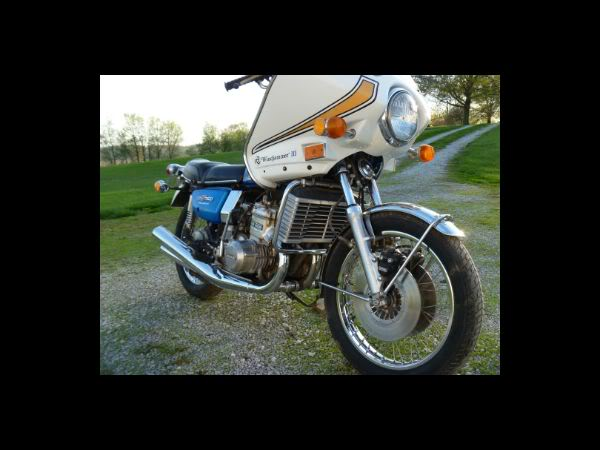 First Water Buffalo 1974GT750Right