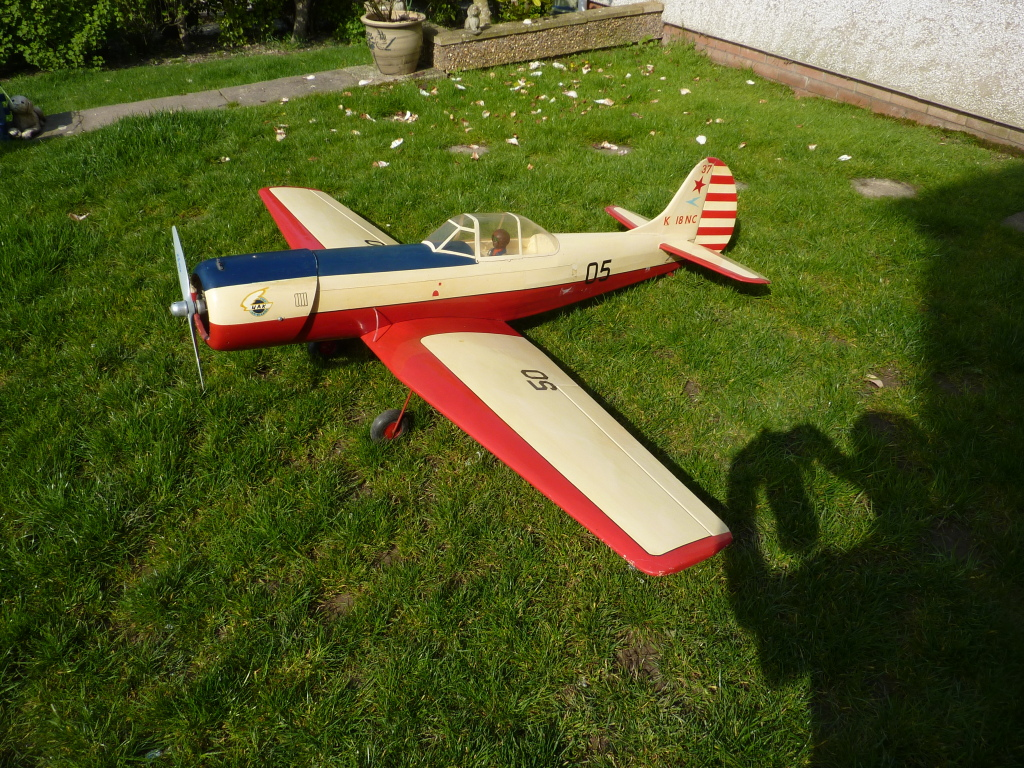 Models for Sale Yak501
