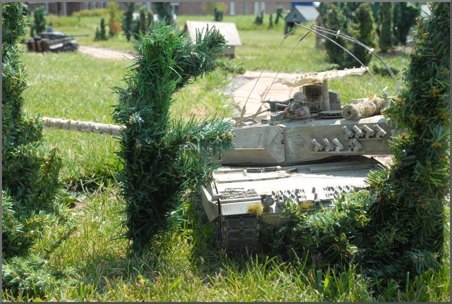 September 2013 Battleday - Page 2 Leopardbush_zpsc6b3770b
