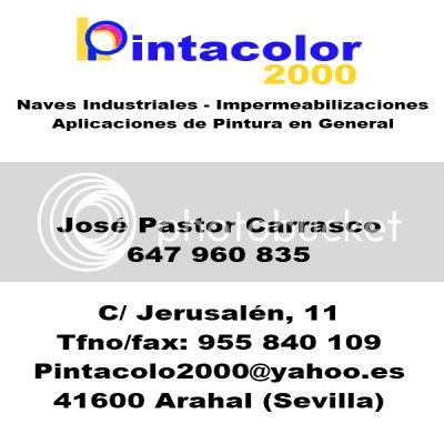 Concierto AM Ntra Sra Victoria en iglesia de los Terceros - Sevilla 2013 Pintacolor3_zps5ab2c552