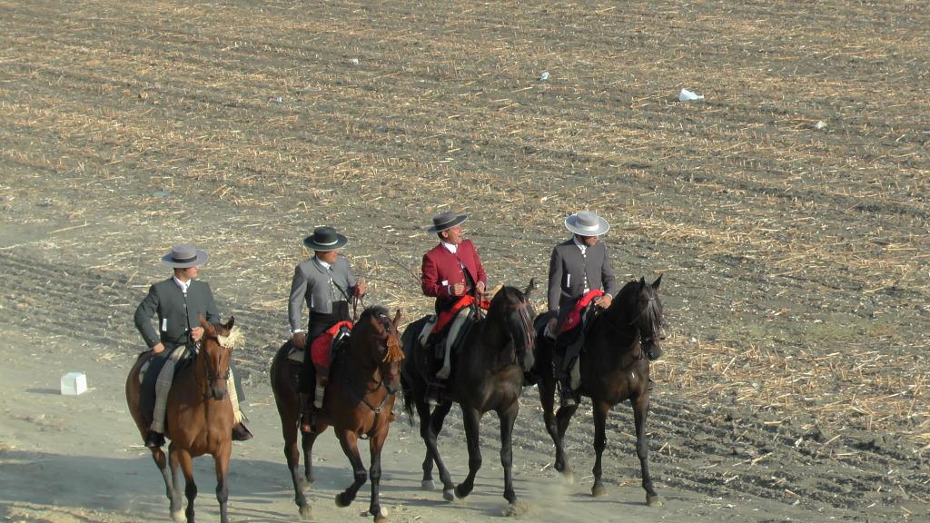 Feria Arahal 2012: Concurso de doma vaquera de caballos 4e02649a