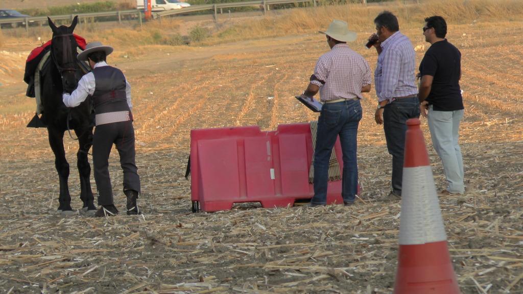 Feria Arahal 2012: Concurso de doma vaquera de caballos 64e01659
