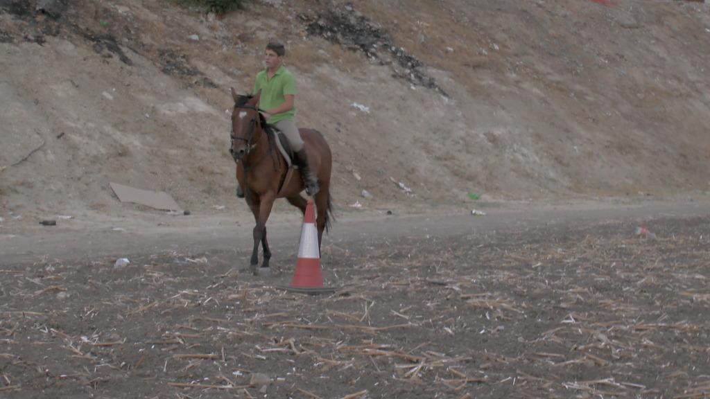 Feria Arahal 2012: Concurso de doma vaquera de caballos B4d4bea2