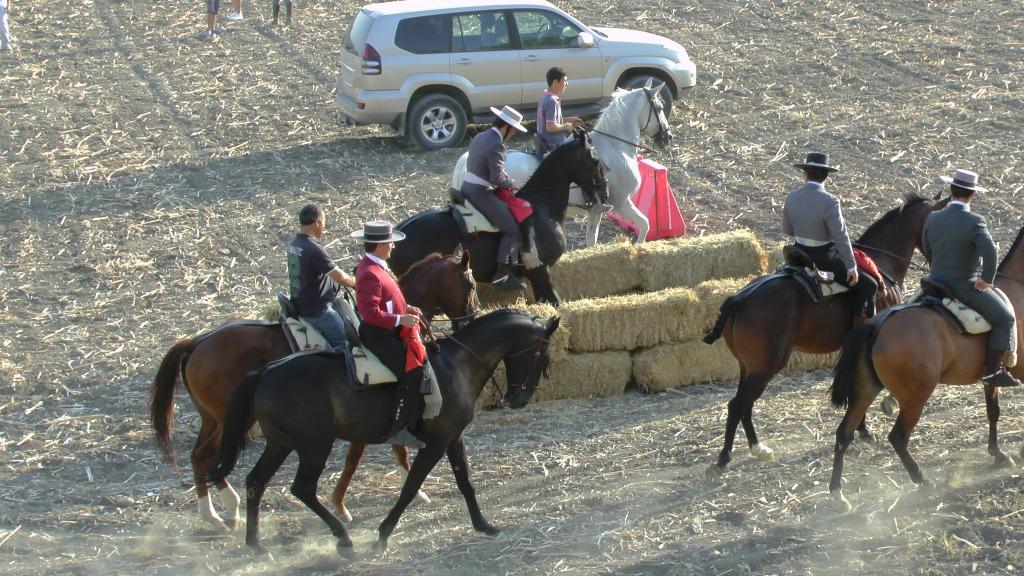 Feria Arahal 2012: Concurso de doma vaquera de caballos C6054293