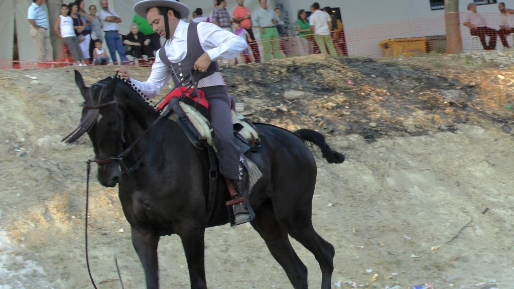 Feria Arahal 2012: Concurso de doma vaquera de caballos C9975f1e