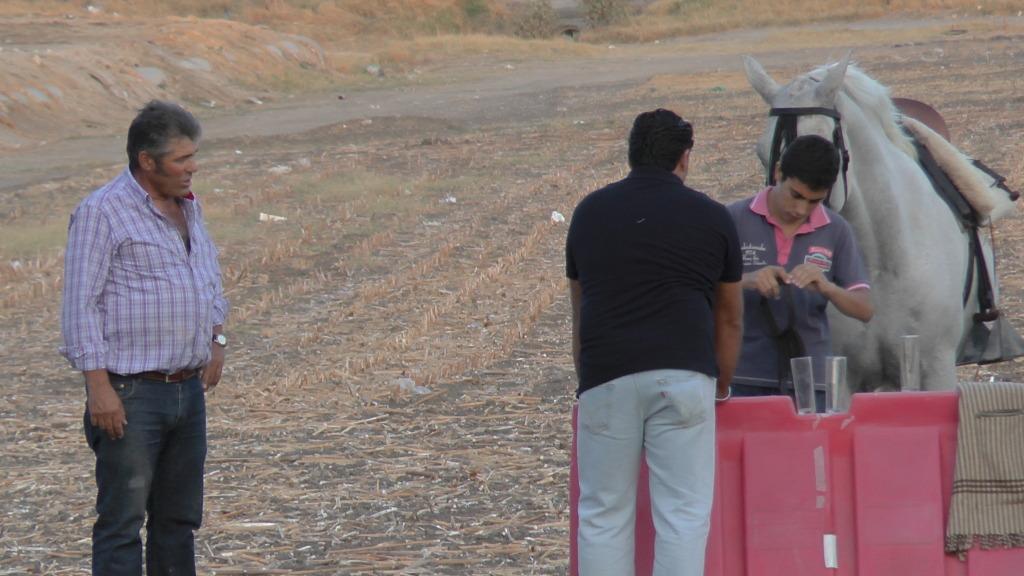 Feria Arahal 2012: Concurso de doma vaquera de caballos Fd00aedc