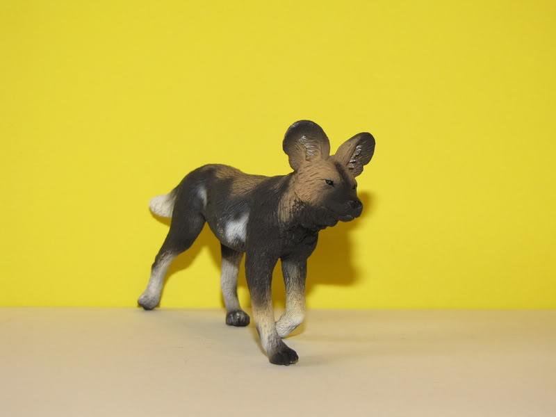 Mojo Fun African wild dog walkaround IMG_5674