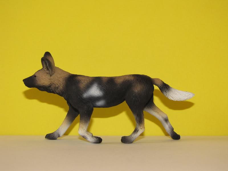 Mojo Fun African wild dog walkaround IMG_5678