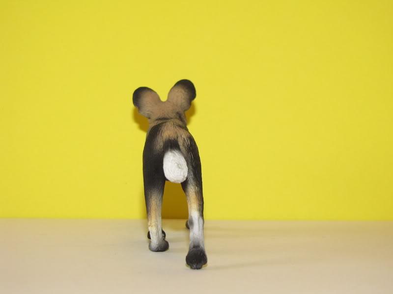Mojo Fun African wild dog walkaround IMG_5680