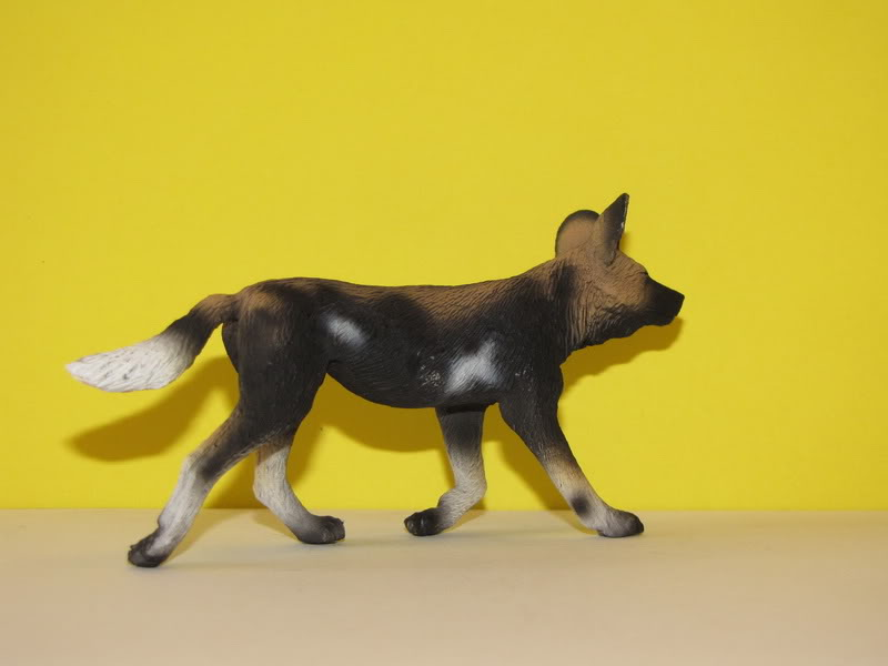 Mojo Fun African wild dog walkaround IMG_5682