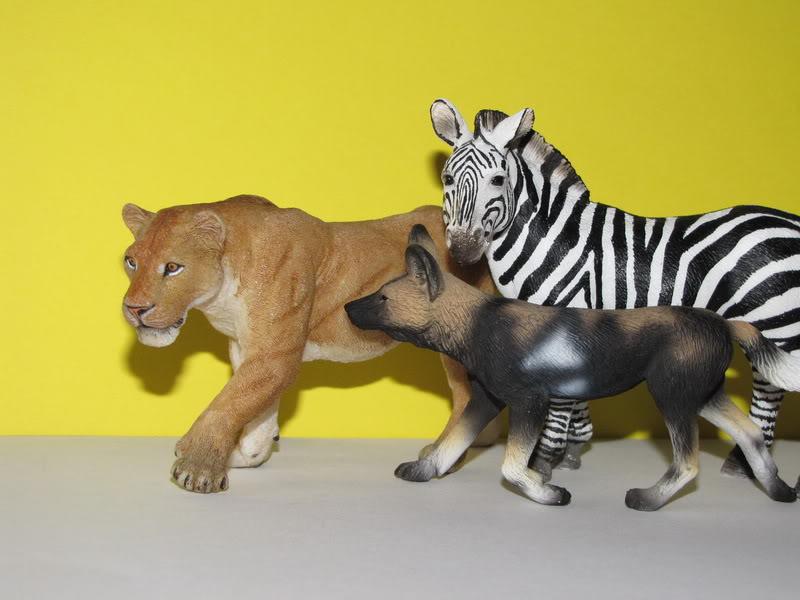 Mojo Fun African wild dog walkaround IMG_5691