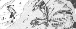 Naruto Legend Tournoi_zps3b1e0da2