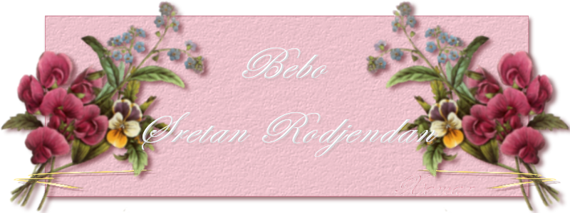 Bebo, Bebice... srecan Ti rodjeni dan :) BEBA