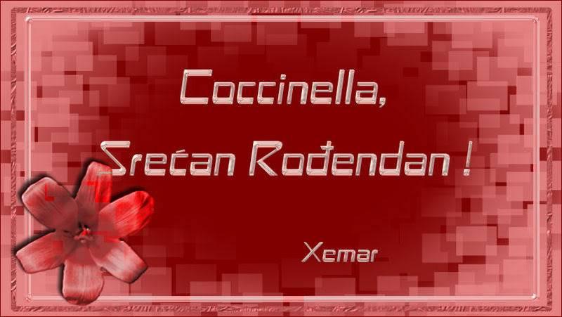 Coccinella Coccinella