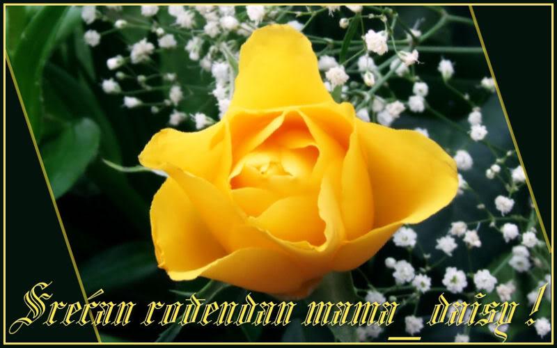 Srecan rodjendan mama daisy Mama_daisy