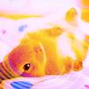 Sweet Creations *-* Cute01