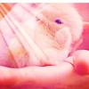 Sweet Creations *-* Cute04